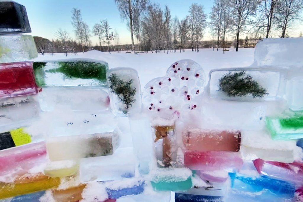 capture_snow16