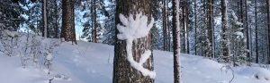 winter-art-workshop-ow